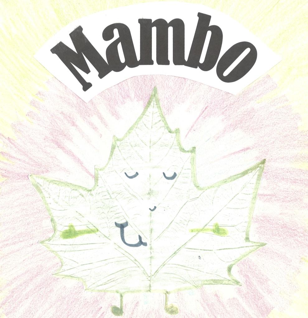 Mambo cover1